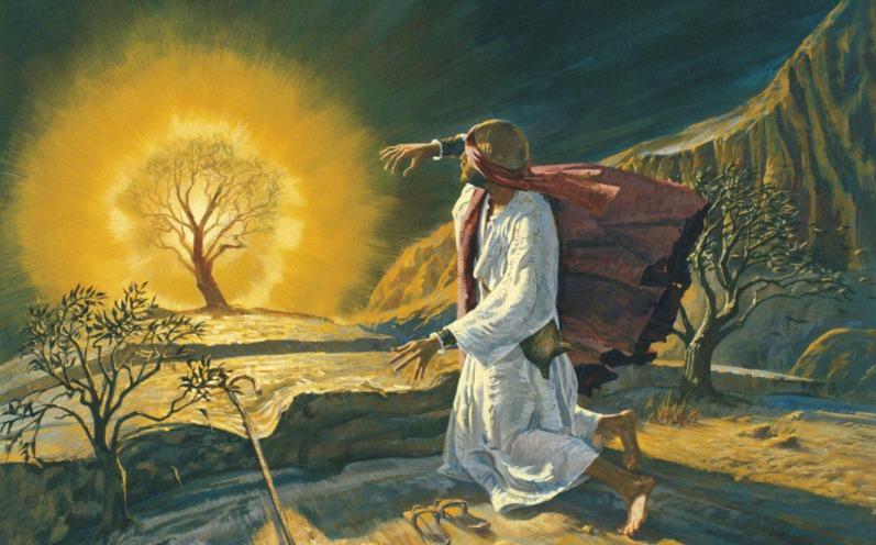 摩西書教導我的事