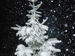 聖誕故事: 聖誕傳統