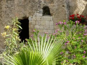 救主的復活使每個人都能復活